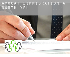 Avocat d'immigration à  North Yelm