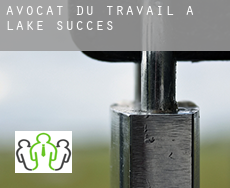 Avocat du travail à  Lake Success