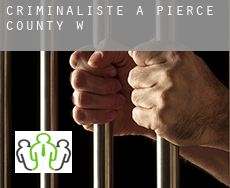 Criminaliste à  Pierce