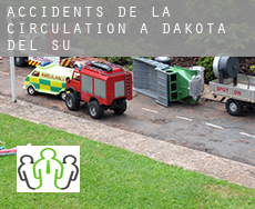Accidents de la circulation à  South Dakota